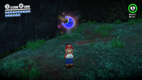 SMO Wooded Moon 31.png