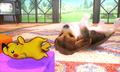 3DS SmashBros scrnC08 02 E3.png