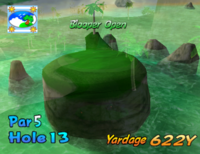 The thirteenth hole of Blooper Bay from Mario Golf: Toadstool Tour.