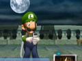 Hung Luigi3.png