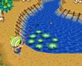 WWSM Animal Crossing - Wild World.png