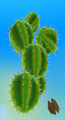Cacti Planets.png