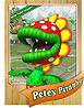 Level1 Peteypiranha Front.jpg