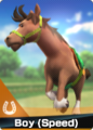 Card Horse Boy (Speed)2.png