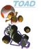 MK64Toad.PNG