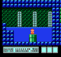 Fire Mario entering a Warp Pipe.