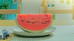 No. 22 Watermelon Munch