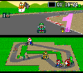 Luigi win.png