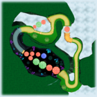 Wii Mushroom Gorge bottom screen map