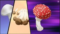 "Three types of real mushrooms shown in the show Dr. Stone. The amanita muscaria on the right is noted in the show to look ""like something out of a Mario game."""