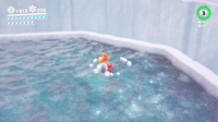 SMO Snow Moon 46.png