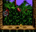 Candy's Challenge -- Kongo Jungle.png