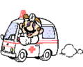 SMBPW Dr Mario and Van.png
