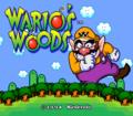 Wario's Woods005.png
