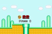 Mario's Mallet