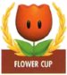 Mario Kart: Super Circuit promotional artwork: The Flower Cup emblem.