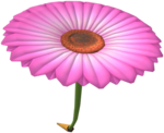 MKT Icon PinkFlowerGlider.png
