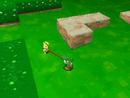 The maze outside Mushroom Castle