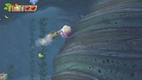 A Giant Clam in Donkey Kong Country: Tropical Freeze