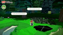 Not-Bottomless Hole No. 4 of Whispering Woods in Paper Mario: The Origami King.