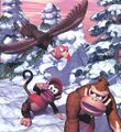 DK and Diddy in snow area DKC.jpg
