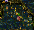 Bramble Scramble DKC2 hidden area.png