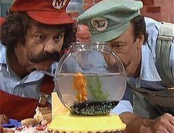 Goodbye Mr. Fish / Kenneth