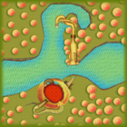 <small>Wii</small> Maple Treeway bottom screen map