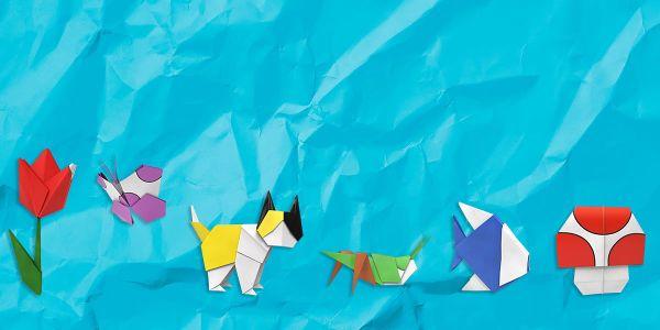 Banner for a Paper Mario: The Origami King Play Nintendo opinion poll. Original filename: <tt>PLAY-4658-PMTOK-poll01_2x1_v02.0290fa98.jpg</tt>