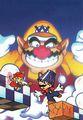 Mario and Wario main artwork.jpg
