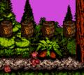 Forest Frenzy GBC Bonus Area 1.png