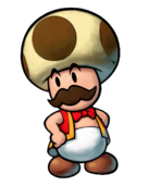 Toadsworth the Younger's artwork from Mario & Luigi: Partners in Time.