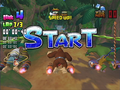 DK Bongo Blast 01.png