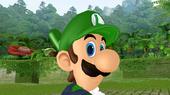 Luigi's eye.
