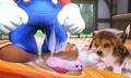 3DS SmashBros scrnC04 04 E3.png