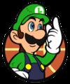 LuigiHoops.png
