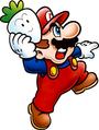Mario Art-Super Mario Bros 2.png