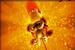 Diddy Kong's Mega Strike