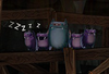 The Squeekly family