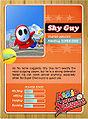 Level1 Shyguy Back.jpg