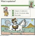 Equitation quiz card.png