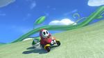 Shy Guy, racing in the Biddybuggy.