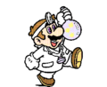 SMBPW Dr Mario and Flask.png