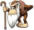 Cranky Kong DKonga3.png