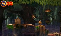 Donkey and Diddy Kong approach a pumpkin in a Forest area.