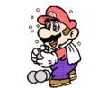 SMBPW Mario Bowling.png