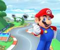 MKT Icon YoshiCircuitRGCN Mario.png