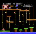 DKJ NES Stage 1 Screenshot.png