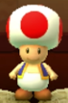 Toad as viewed in the Character Museum from Mario Party: Star Rush
