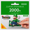 PTWSM Luigi Package.png